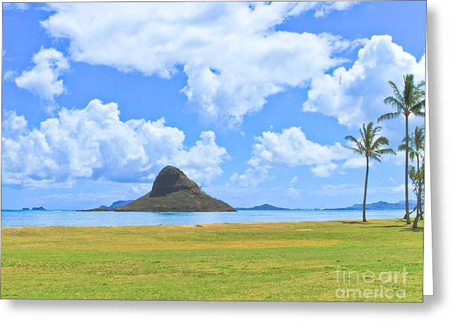 Chinamans Tat Greeting Card by Terry Cotton