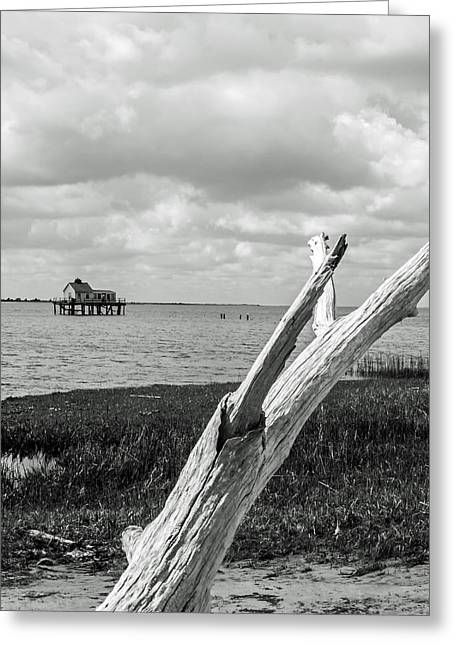 Chincoteague Oystershack Bw Vertical Greeting Card