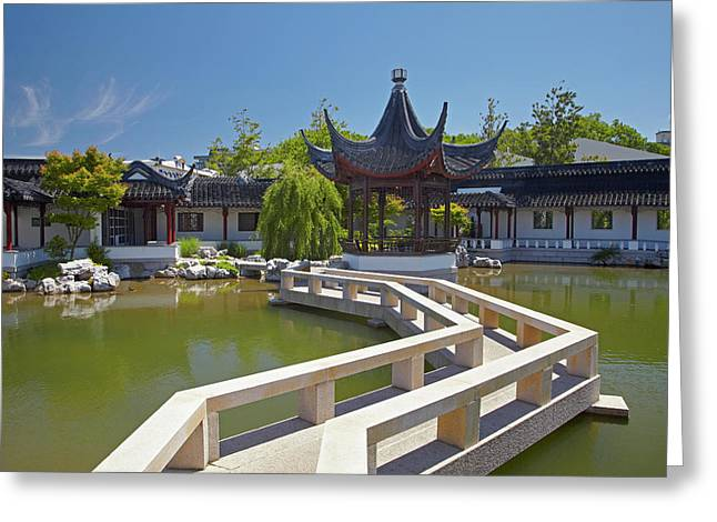 Chinese Gardens, Dunedin, Otago, South Greeting Card by David Wall
