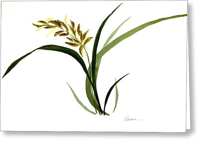 Chinese Wild Orchid #4 Greeting Card by Alethea McKee