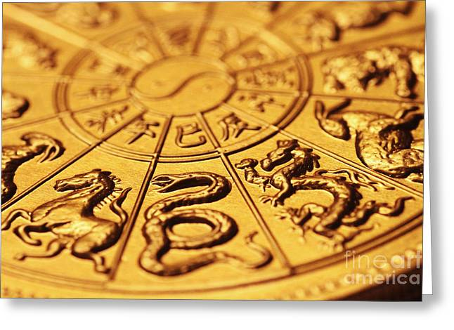 Chinese Zodiacs Greeting Card
