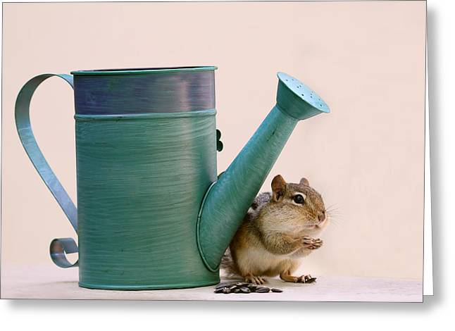 Chipmunk And Watering Can Greeting Card by Peggy Collins