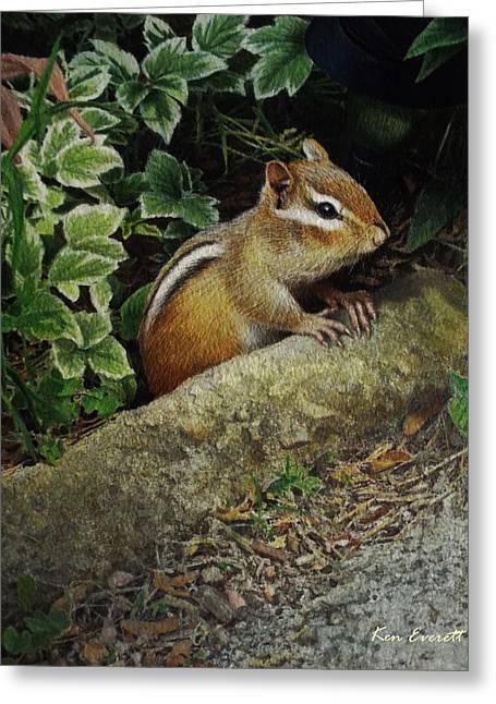 Chipmunk Greeting Card by Ken Everett