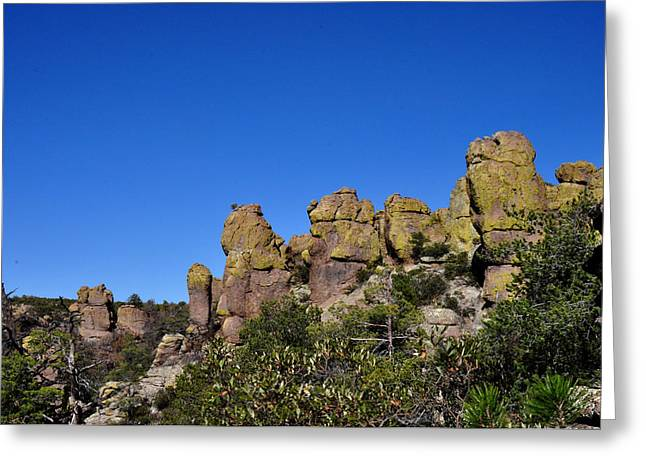Chiracahua Mountains Greeting Card by Diane Lent