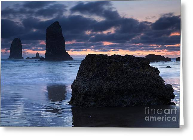 Chiseled By The Sea Greeting Card by Mike  Dawson
