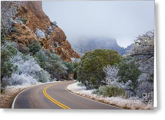 Chisos Winter Road Greeting Card by Inge Johnsson