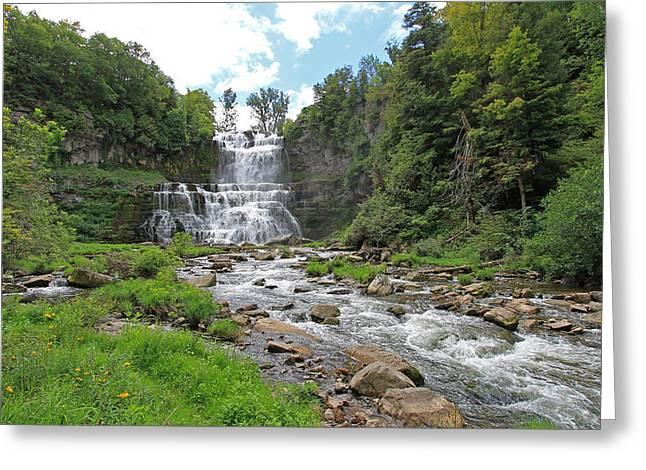Chittenango Falls In August Greeting Card