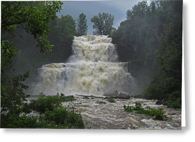 Chittenango Falls June 2013 Greeting Card