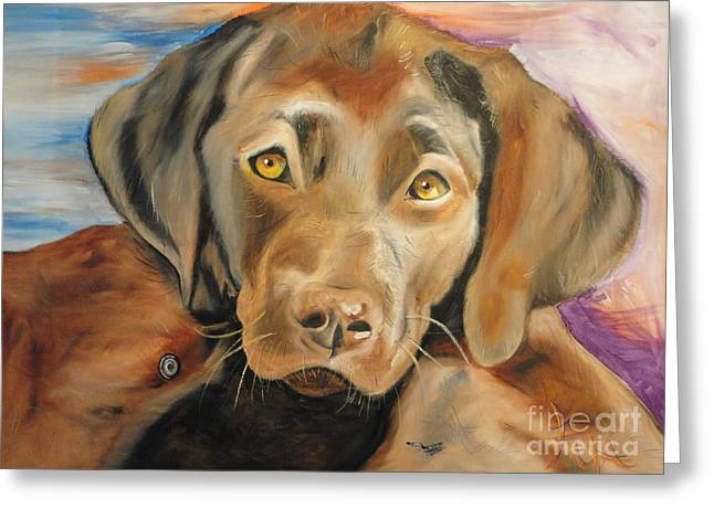 Chocolat Labrador Puppy Greeting Card