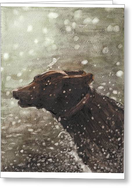 Chocolate Lab In Water Watercolor Portrait Greeting Card by Mike Theuer