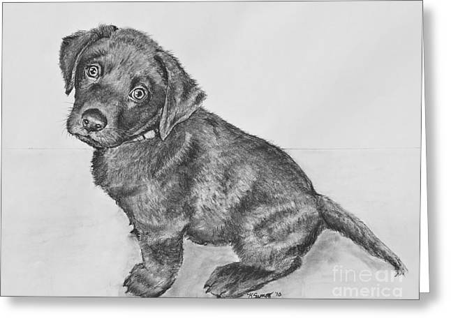 Chocolate Lab Puppy Artwork Greeting Card by Kate Sumners