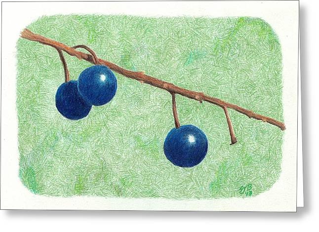 Choke Cherry Greeting Card