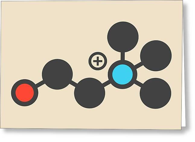 Choline Essential Nutrient Molecule Greeting Card by Molekuul