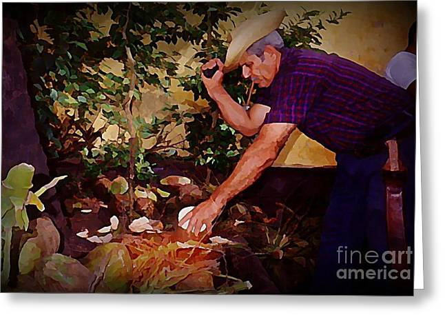 Chopping Coconuts In Cuba Greeting Card
