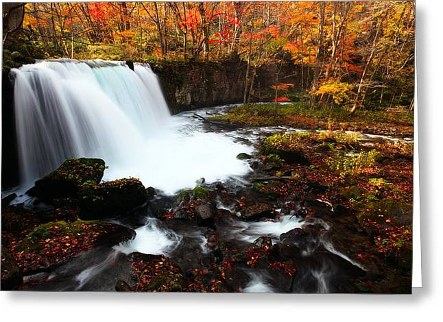 Choushi - Ootaki Waterfall In Autumn Greeting Card