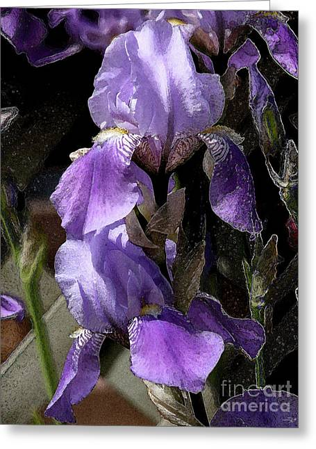 Chris' Garden - Iris 4 Greeting Card by Stuart Turnbull