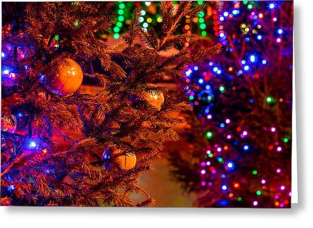 Christmas Greeting Card by Alexander Senin
