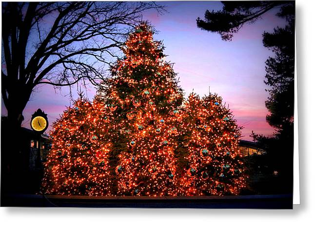 Greeting Card featuring the photograph Christmas At The New York Botanical Garden by Aurelio Zucco