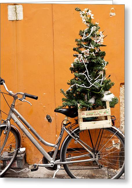 Christmas Bicycle Greeting Card by Rae Tucker