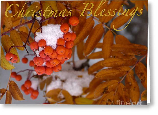 Christmas Blessings Card Greeting Card by Vi Brown
