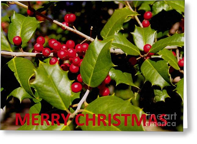 Christmas Card 1  Greeting Card by Rod Ismay