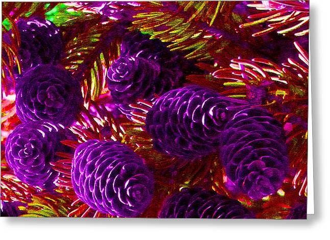 Christmas Cones Greeting Card by James Hammen