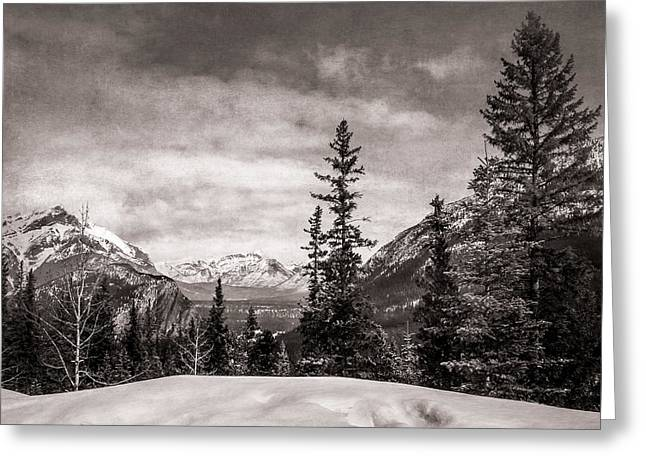 Christmas Day In Banff Bw Greeting Card