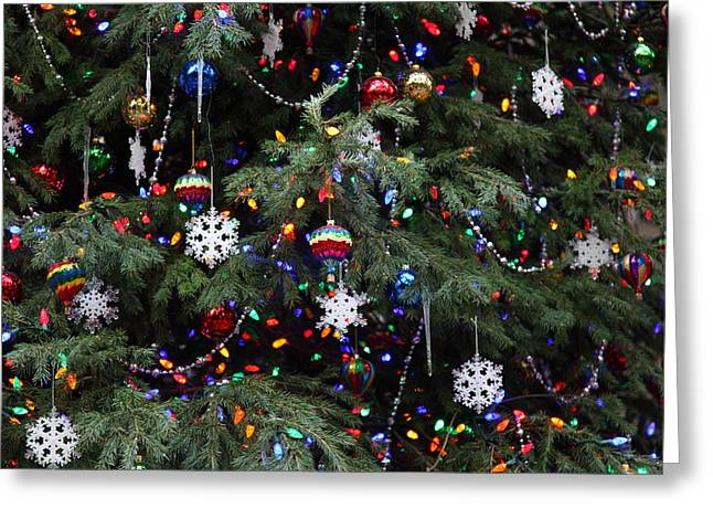 Christmas Display - Us Botanic Garden - 011350 Greeting Card by DC Photographer