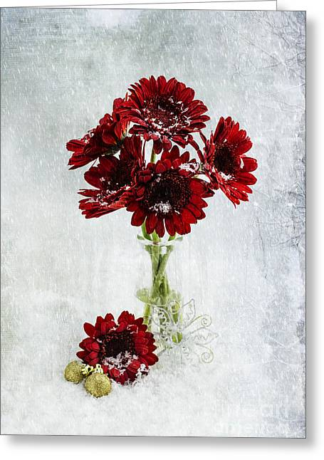 Christmas Flowers  Greeting Card by Nicole Markmann Nelson