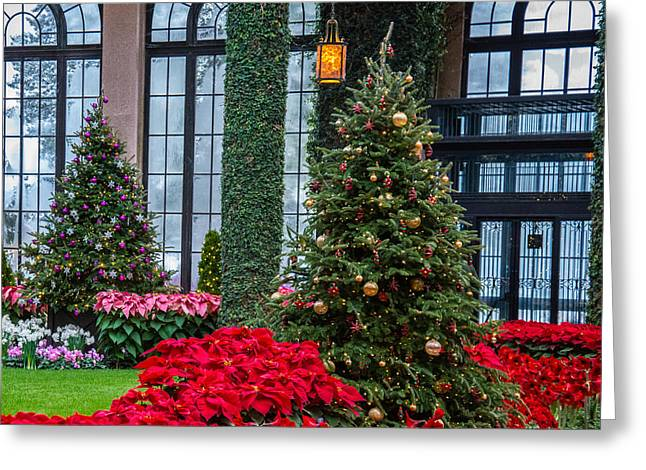 Christmas Garden #2 Greeting Card by Phil Abrams