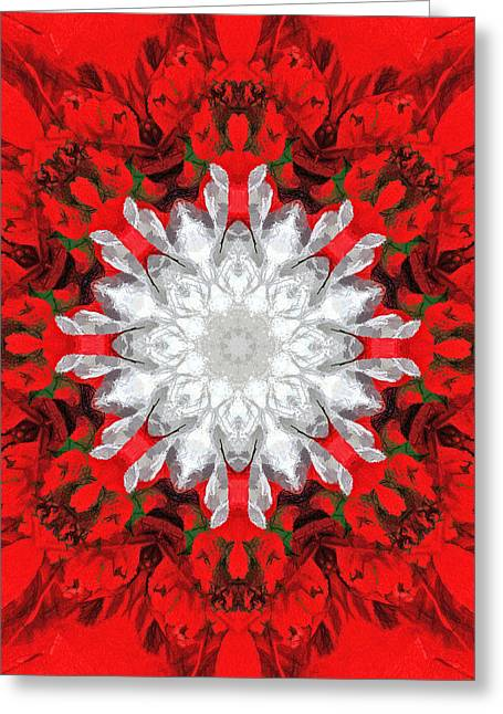 Christmas Kaleidoscope I Greeting Card by Dawn Currie