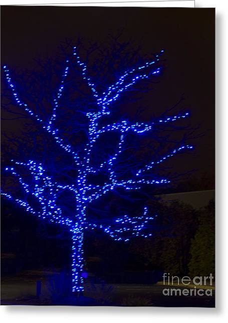 Christmas Light Series No 2  Blue  Greeting Card by Bill Woodstock