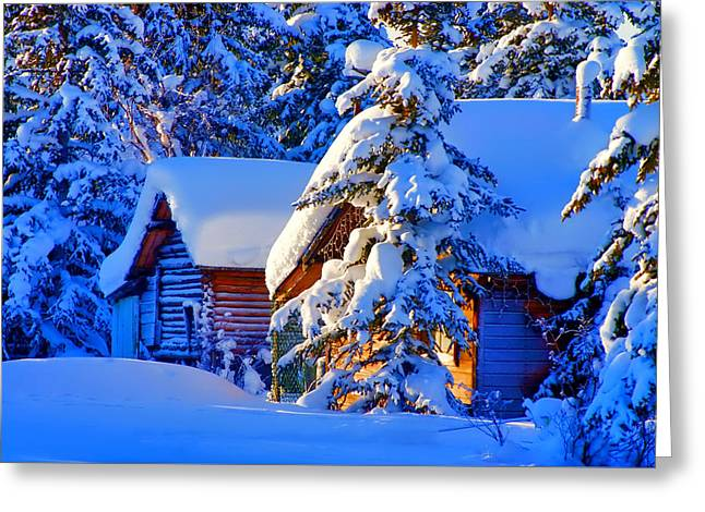 Christmas  Greeting Card by Doc Braham