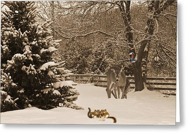 Christmas Morning. Greeting Card by Kelly Nelson