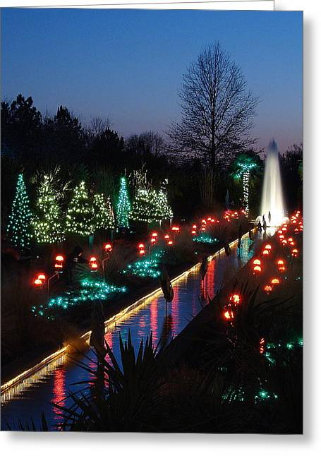 Christmas Reflections Greeting Card by Rodney Lee Williams