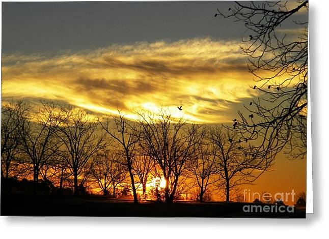 Christmas Sunrise Greeting Card