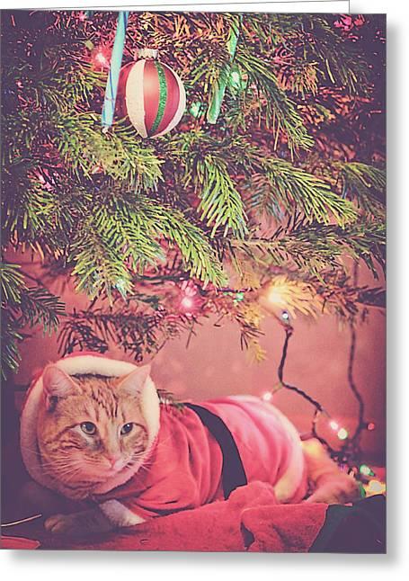 Christmas Tabby Greeting Card