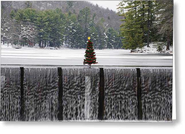 Christmas Tree At Bear Creek Waterfall Greeting Card by Bill Cannon