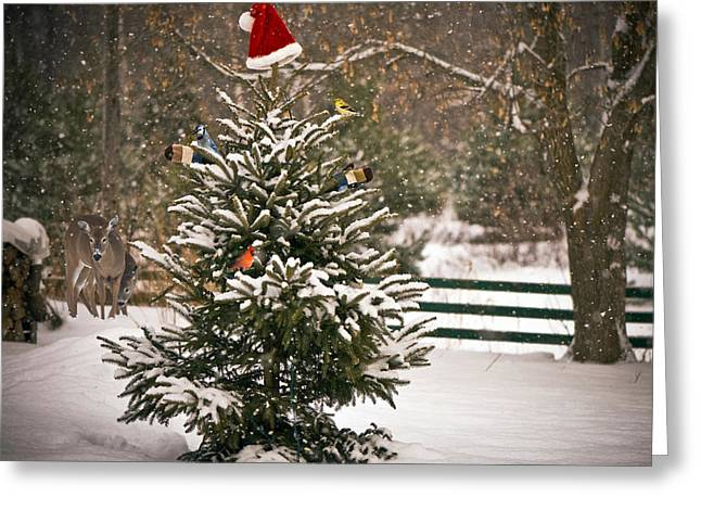 Christmas Tree. Greeting Card