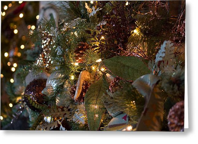 Christmas Tree Splendor Greeting Card by Patricia Babbitt