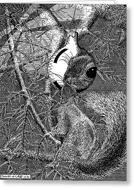 Christmas Tree Squirrel Greeting Card