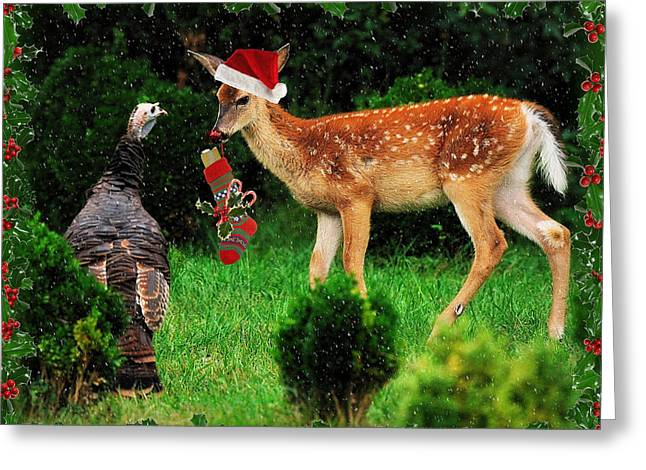 Christmas Wild Turkey And Fawn Greeting Card by Angel Cher