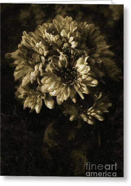 Chrysanthemum Greeting Card by Dariusz Gudowicz