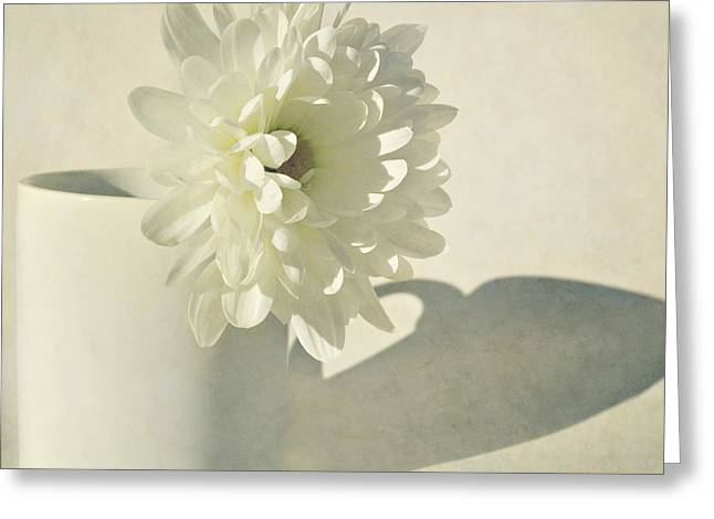 Chrysanthemum Shadow Greeting Card by Lyn Randle