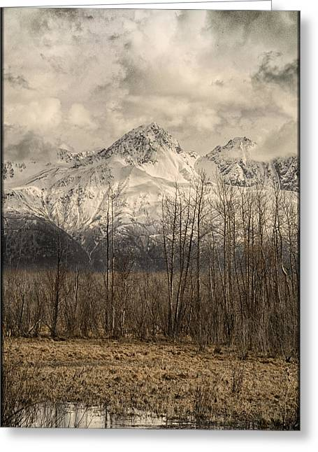 Chugach Mountains In Storm Greeting Card