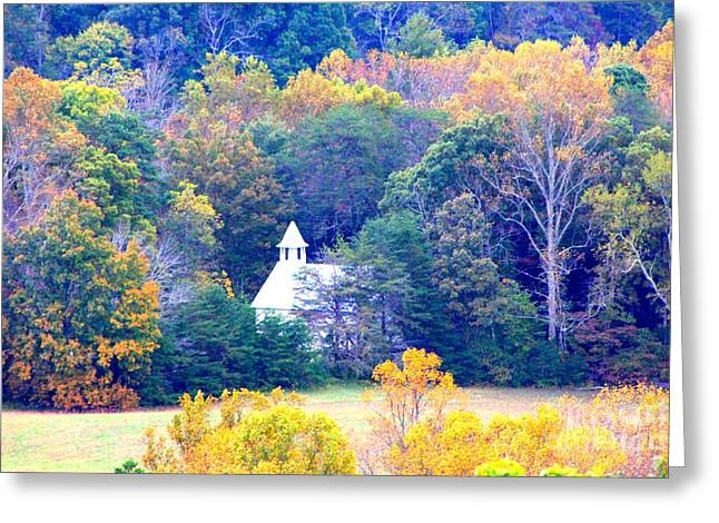 Church In The Glade Greeting Card