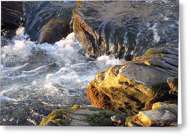 Churning Little Waterfalls On The Watauga Greeting Card