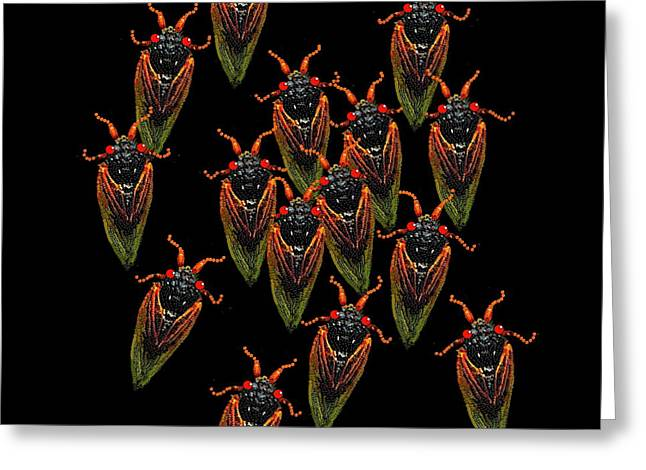 Cicadas Greeting Card by R  Allen Swezey