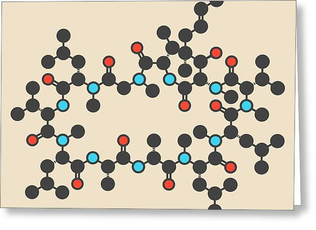 Ciclosporin Or Cyclosporine Drug Molecule Greeting Card
