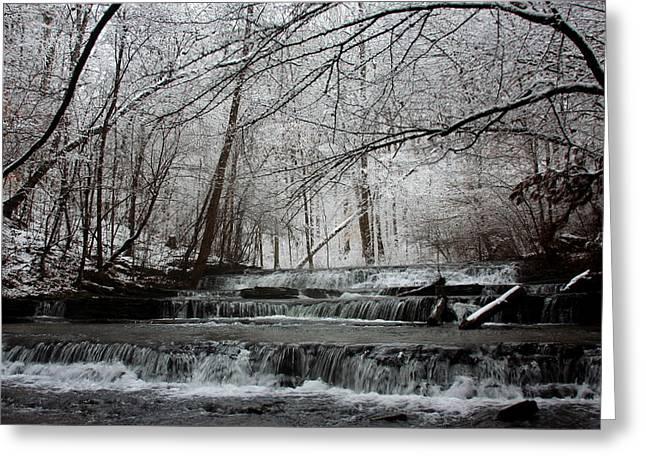 Cinderella Falls In Winter Greeting Card by Rachel Hallmark